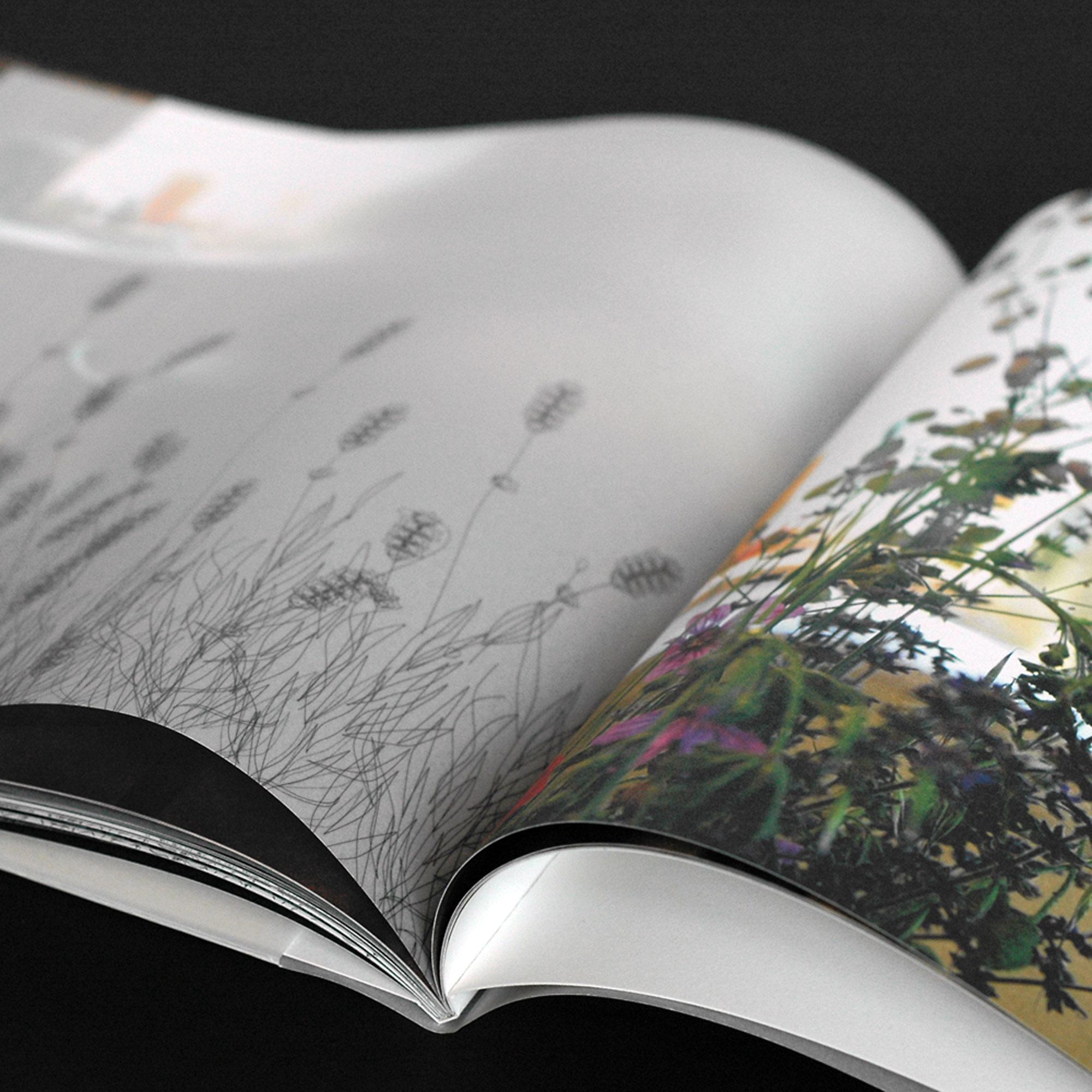 masavukmanovic.com - paradiz catalogue 06